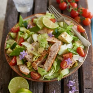 Cajun Chicken recipe from the Rejuvenated Youth Plan Book